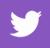 twitter-logo.fw
